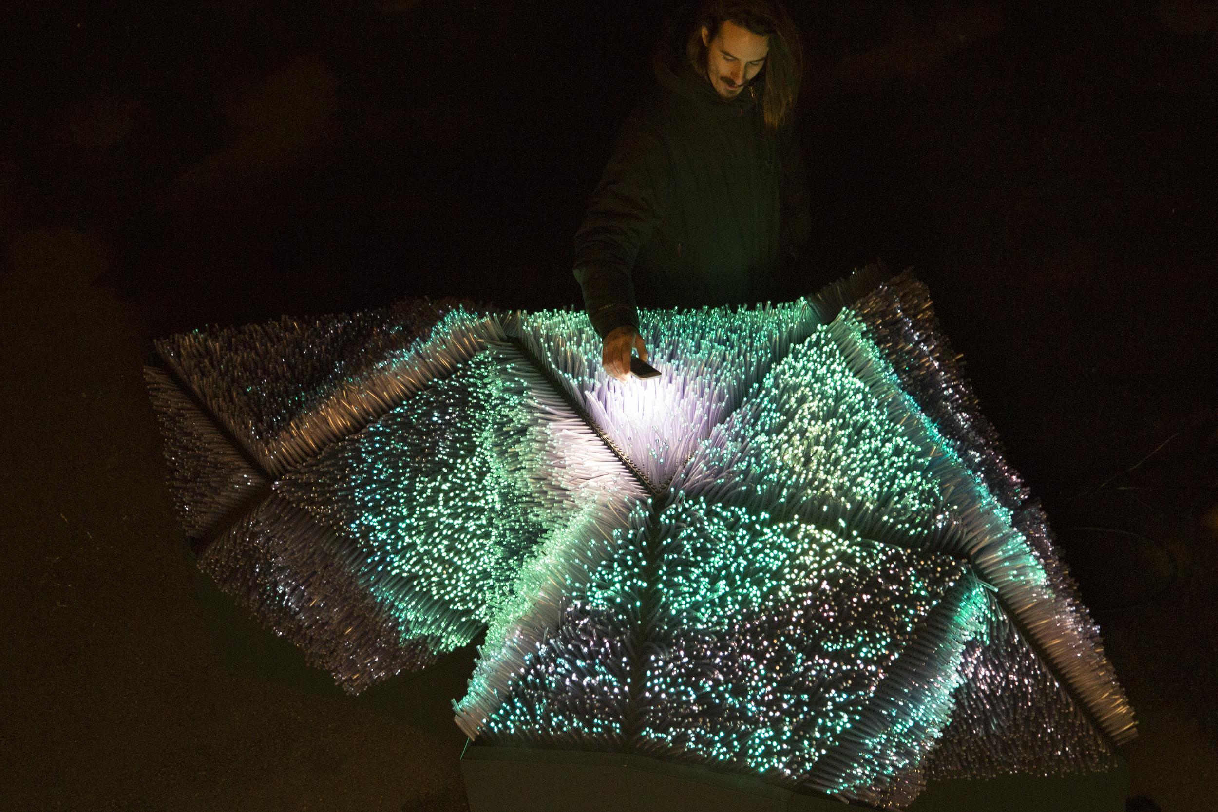 L'oeuvre Light Pollination sera présentée au CRI Paris pour la Nuit Blanche, le 6 octobre.