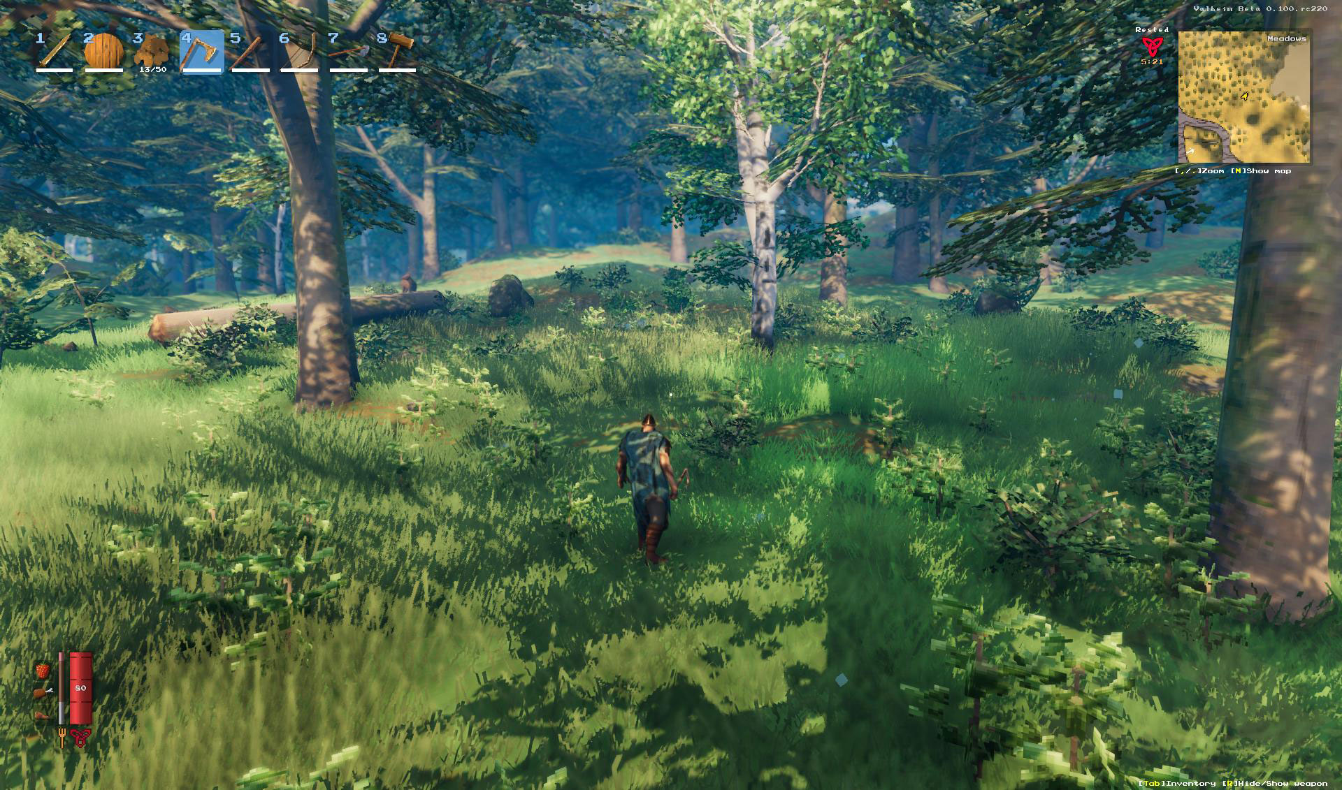 How important is light in a video game? The Valheim case